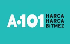 A 101